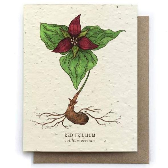 Plantable Seed Paper Greeting Card - Red Trillium