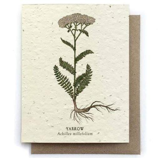 Plantable Seed Paper Greeting Card - Yarrow