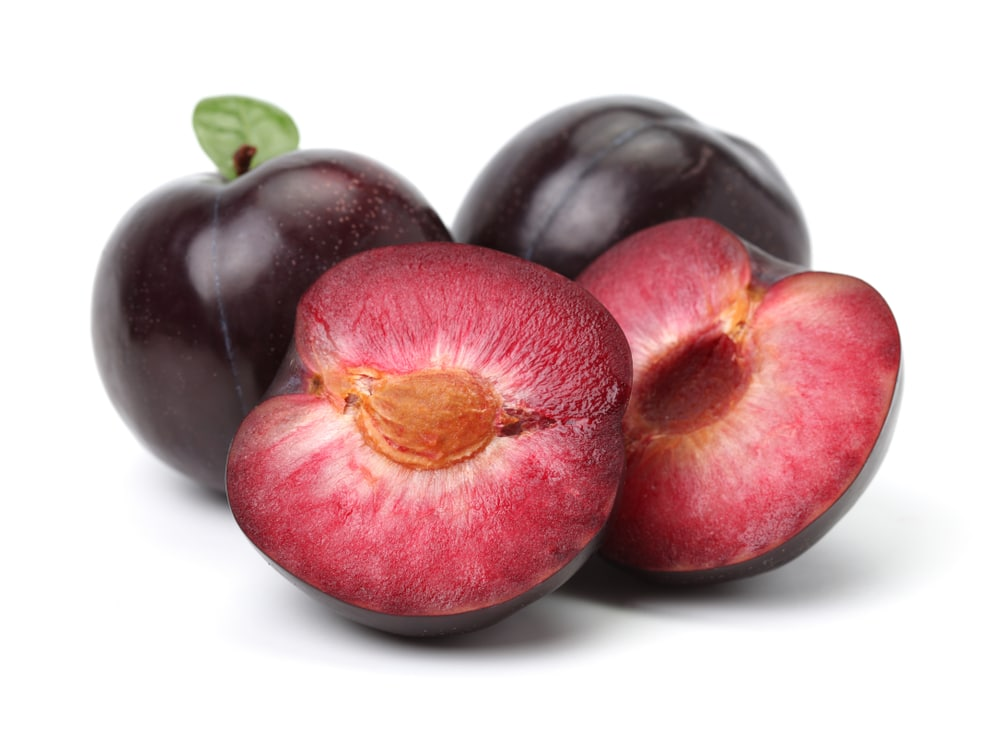 PLUMS, RED (3 COUNT)