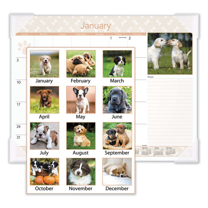 Puppies Monthly Desk Pad Calendar, 22 x 17, 2020
