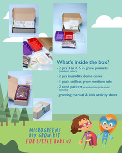SOLANA GREENS | Microgreens Grow Kit for KIDS
