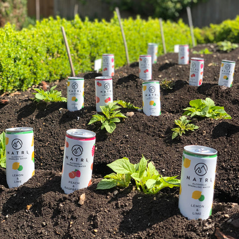 Hard seltzer in the UK, the next drinks trend