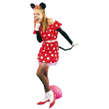 Eurocarnavales - Dames Minnie mouse - Maat One Size