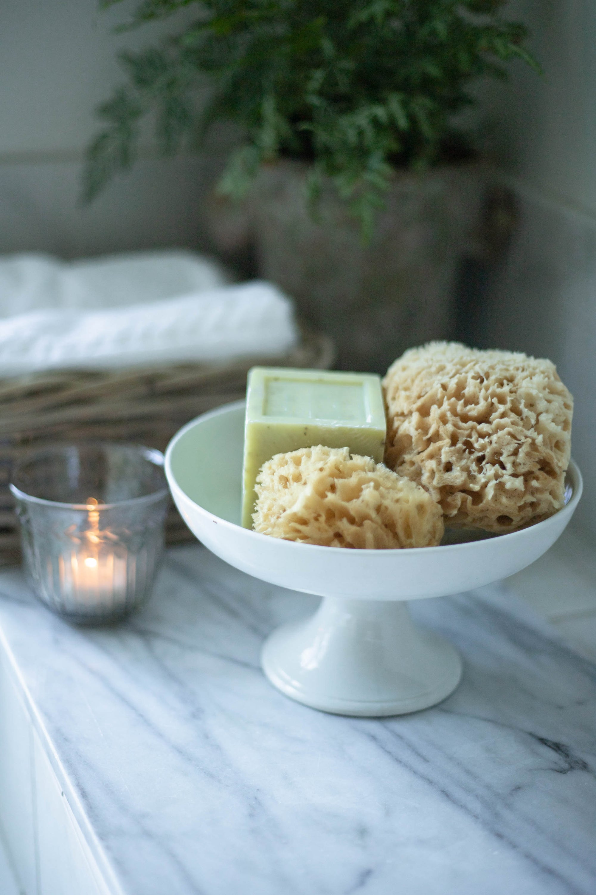 Natural Sea Sponge Set