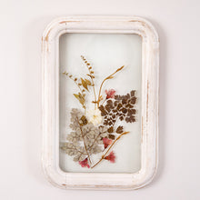 Load image into Gallery viewer, Framed Pressed Botanical Wall Art