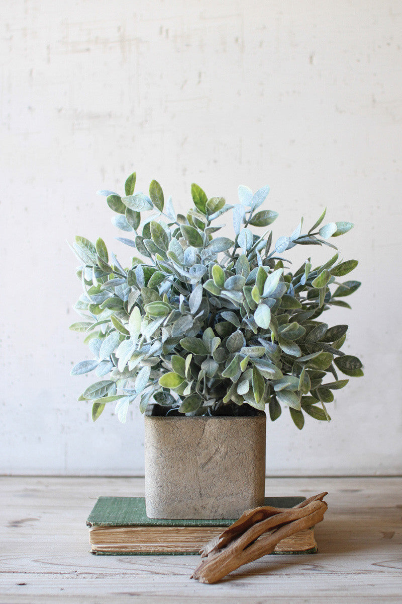 Faux Sage Bush in Square Pot