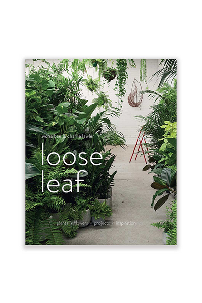 Loose Leaf - Wona Bae