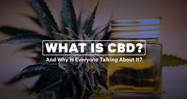 Why Is Everyone Talking About CBD?