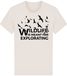 Wildlife is meant for explorating