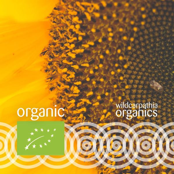 Organic Sunflower Carrier Oil - Wild Carpathia Organics