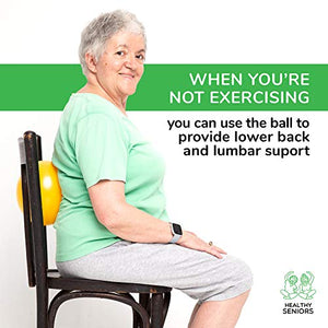 Healthy Seniors Chair Exercise Program with Mini Exercise Ball