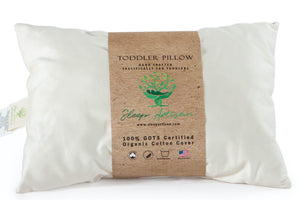 Organic Cotton Cover Toddler Pillow