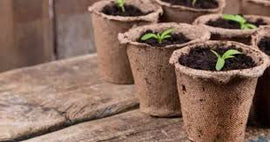 Jiffy pots 4po. (6/pack) BIODEGRADABLE