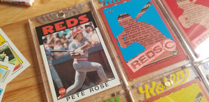 Pete Rose 360B (Warhol)