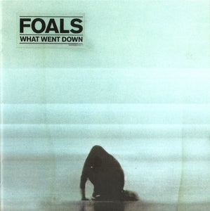 Foals ‎– What Went Down