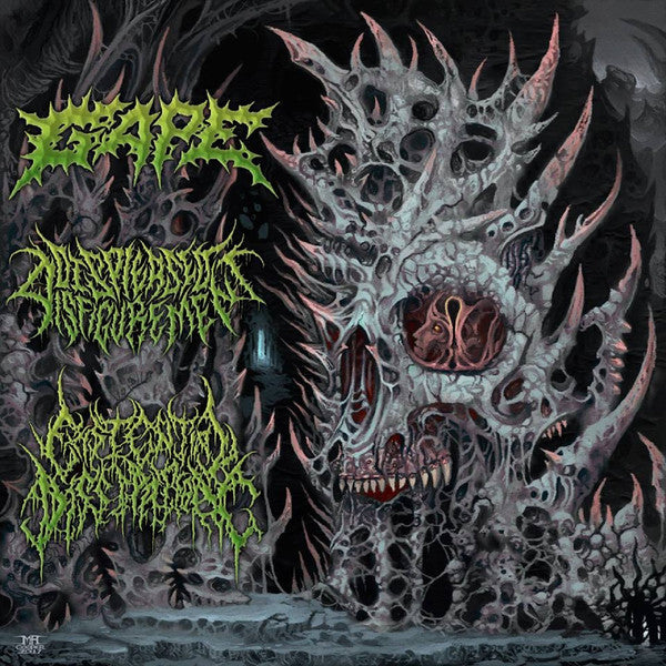 Gape, Displeased Disfigurement, Existential Dissipation ‎– International Solidification 3 Way Split