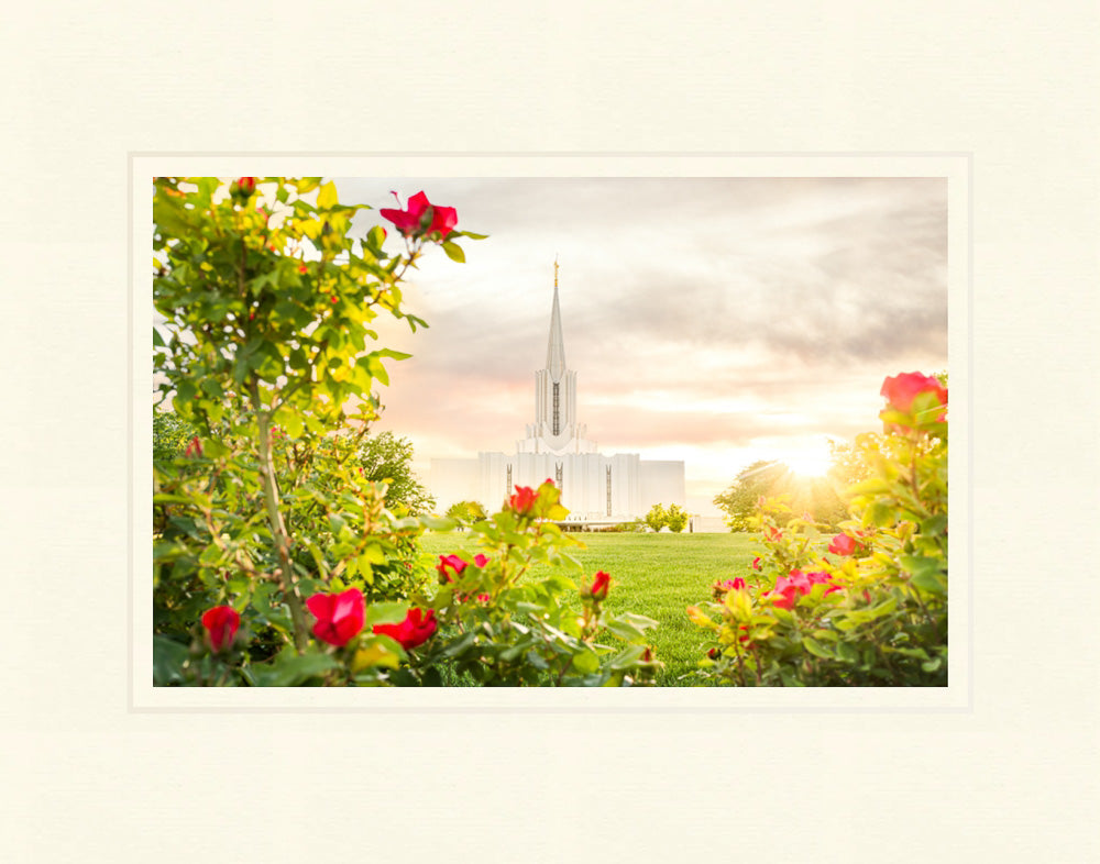 Jordan River Utah Temple - Roses by Evan Lurker