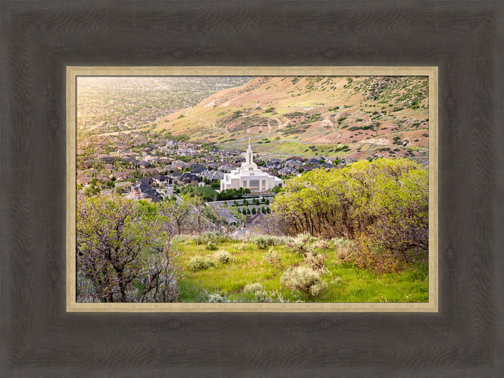 Draper Utah Temple - Irradiated by Evan Lurker