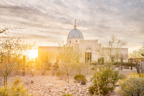 Tucson Arizona Temple - Endless Light by Evan Lurker