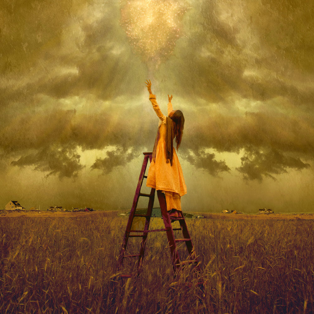 LDS art image of a girls standing on a ladder in a field, reaching up toward Heaven. Light and shines down on her.