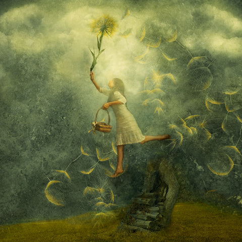 A girl walks through the sky, holding a large dandelion. It's feathery seeds tumble down around her.