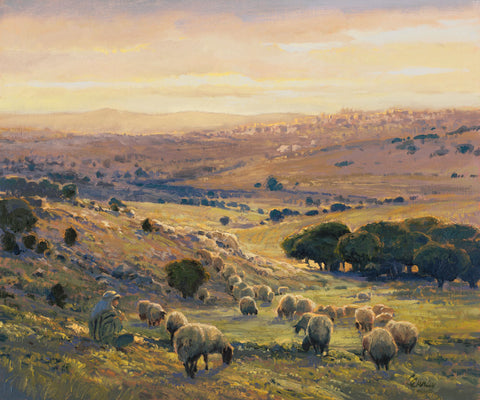 Shepherd sitting watching his sheep in the Bethlehem valley at sunset.