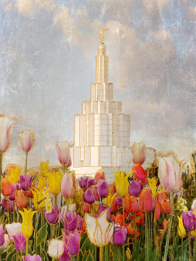 Idaho Falls Idaho Temple with purple, pink, and yellow tulips.