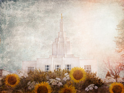Idaho Falls Idaho Temple with yellow sunflowers.