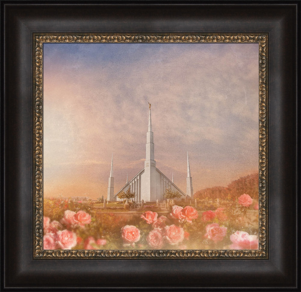 Boise Temple - Roses by Mandy Jane Williams