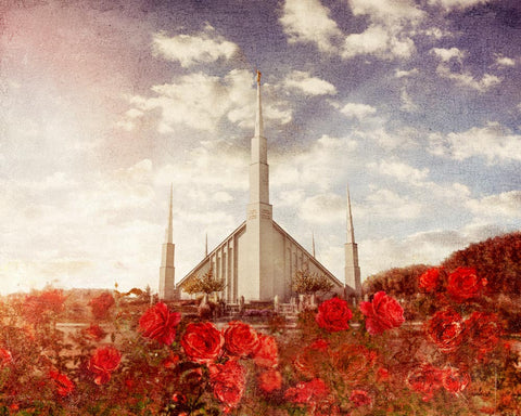 Boise Idaho Temple with Red roses.