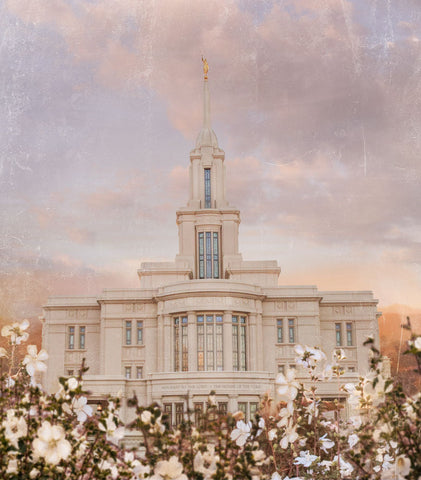 Payson Utah Temple with white flowers.