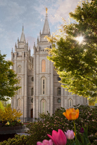 Salt Lake Temple - Springtime in Zion by Robert A Boyd