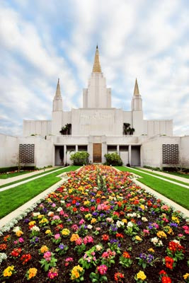Oakland Temple - Flowers by Robert A Boyd