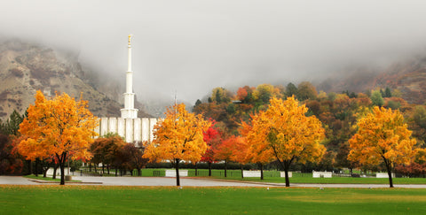 Provo Temple - Autumn Trees by Robert A Boyd