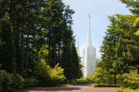Portland Temple - Path by Robert A Boyd