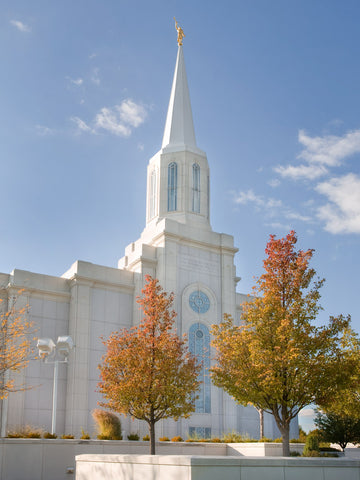 St Louis Temple - Autumn Trees by Robert A Boyd