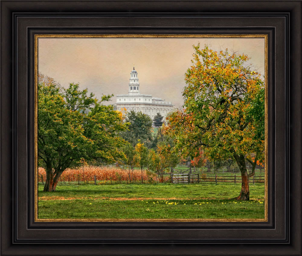 Nauvoo Temple - Apple Tree by Robert A Boyd