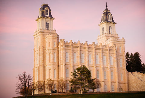 Manti Temple - Pink Sky by Scott Jarvie