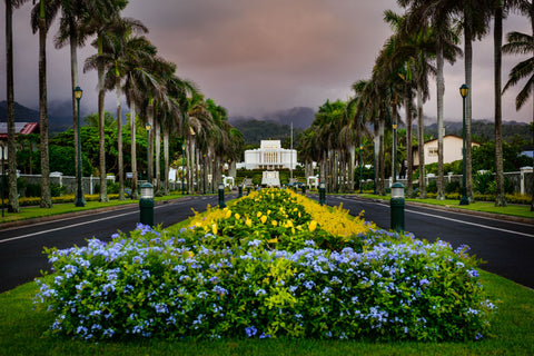 Laie Temple - Down the Road by Scott Jarvie