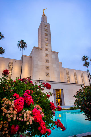 Los Angeles Temple - Red Flowers by Scott Jarvie