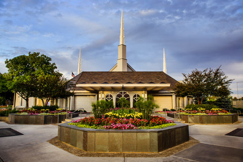 Boise Temple - Flowers by Scott Jarvie