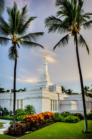 Kona Temple - Palm Trees by Scott Jarvie
