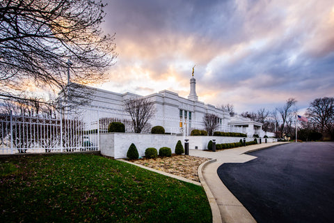 Louisville Temple - From the Side by Scott Jarvie