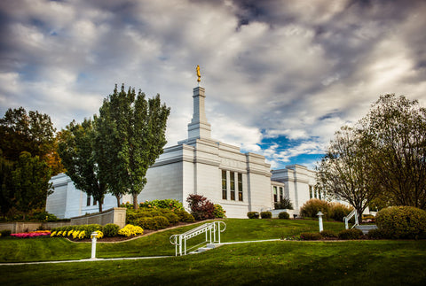 Palmyra Temple - Patch of Blue by Scott Jarvie