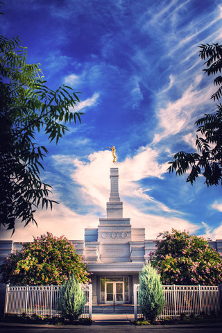 Fresno Temple - Perfect Day by Scott Jarvie