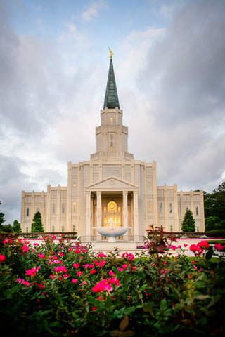 Houston Temple - Temple -Flowers by Scott Jarvie