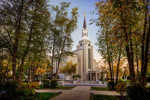 Boston Temple - Through the Trees by Scott Jarvie