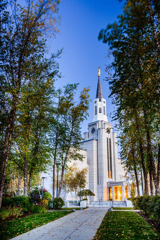 Boston Temple - Fall Pathway by Scott Jarvie