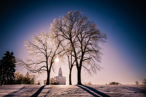 Nauvoo Temple - After an Ice Storm by Scott Jarvie