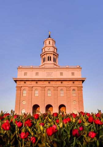 Nauvoo Temple - Tulips by Scott Jarvie